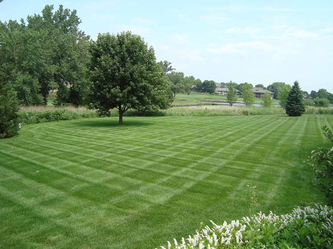 Lawn Care Landscaping Services In